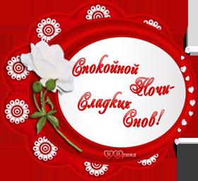 K-POKOINOI-NOCI_SLADKIK-SNOV2.png